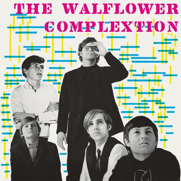 THE WALFLOWER COMPLEXION